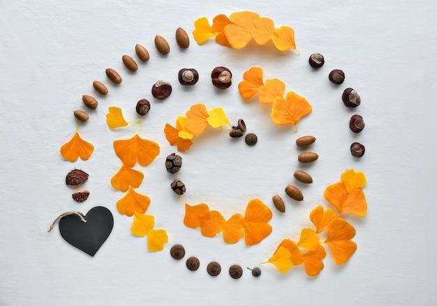 Spiral line made from silk decorative ginkgo leaves, chestnuts, acorns and small decorative pumpkin. Premium Photo