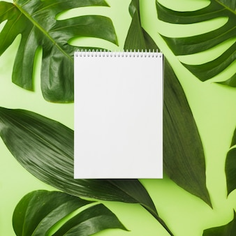 Spiral notepad over green leaves on background