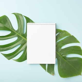 Spiral notepad over the green monstera leaves on blue background