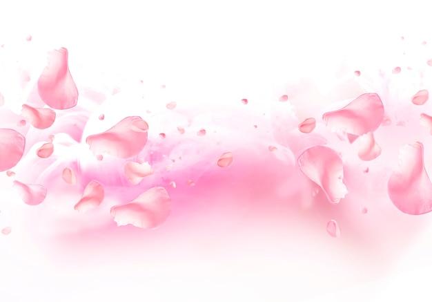 장미 꽃잎 스플래시