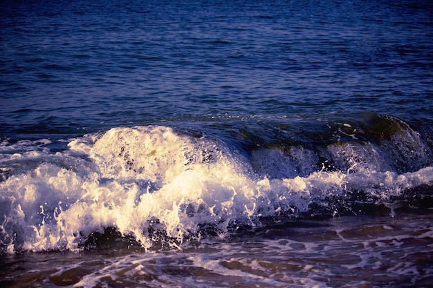 Splashing wave on the  sea in the evening.