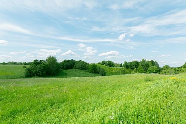 Великолепные пейзажи с зелеными травяными полями и голубым облачным небом на северо-западе россии.