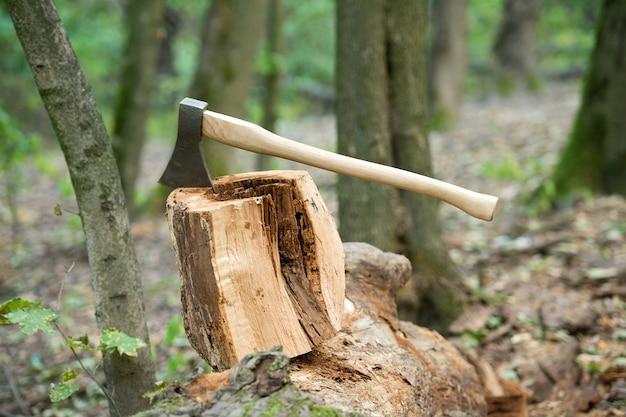 분할 및 절단. 그루터기에 큰 도끼. 자연 풍경에 쪼개는 도끼. 럼버맨 장비. 나무 자르기. 임업 로깅. 목재 수확. 장작 절단.