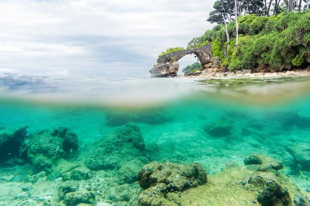 Разделенный вид на море и под водой с пышным тропическим берегом над ватерлинией и кораллами с песком под водой. мост из натурального камня на берегу. жизнь в заповеднике в андаманском море. индийский океан