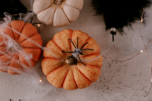 Spooky halloween decoration with different pumpkins, light, spiders.