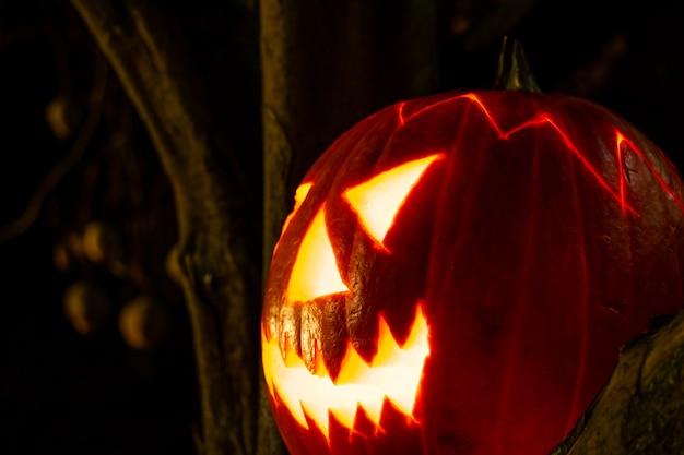 Жуткий хэллоуин тыквенный фонарь крупным планом картина ночью в темноте