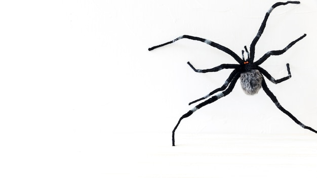 Spooky toy spider for halloween