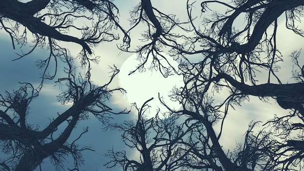 Spooky tree dark night