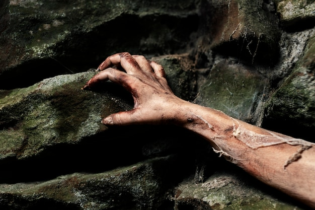 자연 속에서 으스스한 좀비 손
