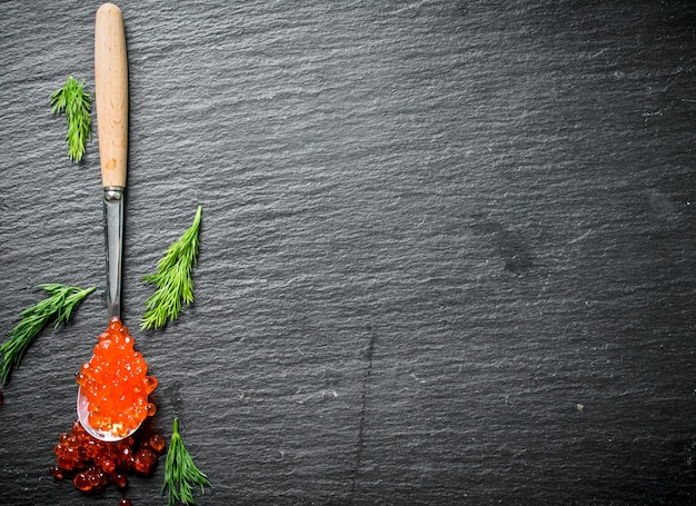 Spoon of red caviar with dill. on black rustic surface