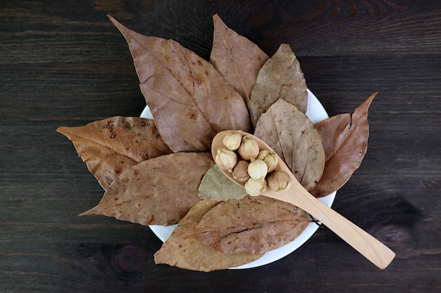Spoon of white cardamoms on the heap of dried bay leaves on black wooden background
