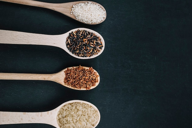 Spoons with various rice types
