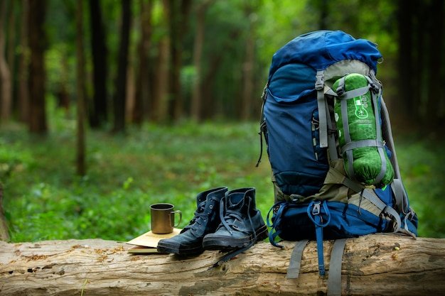 Sport shoes and backpack color blue on the timber in the forest