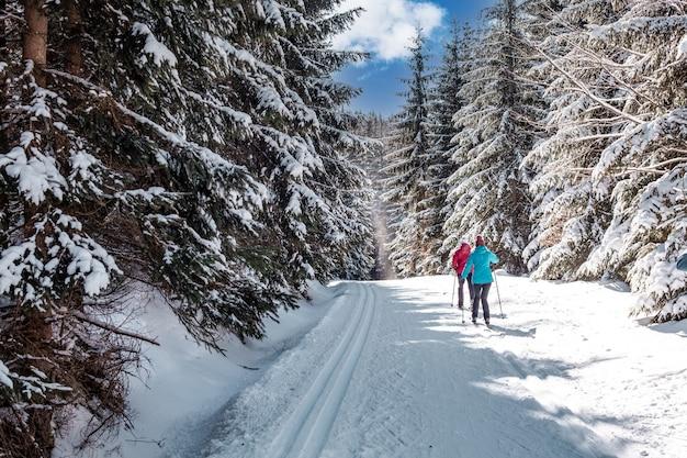 森の中の雪の足跡でのスポーツクロスカントリースキー