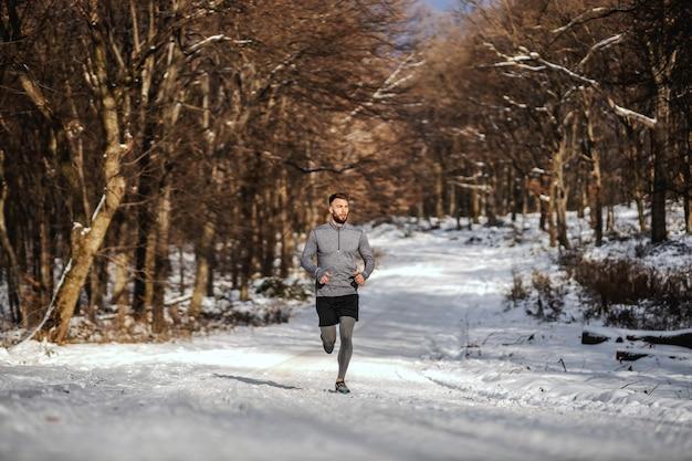 雪の降る冬の日に森でジョギングするスポーツマン。冬のフィットネス、スポーティなライフスタイル、健康的な生活