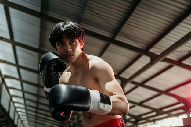 Sportsman muay thai boxer fighting in gloves in boxing cage with the copyspace