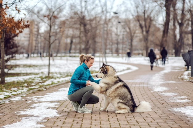 肌寒い天気の公園で犬と散歩中のスポーツ選手。雪、雪の日、寒さ、ペット