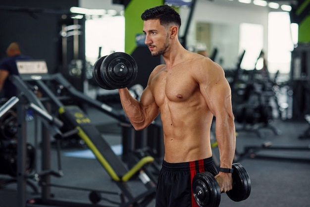 Sporty fitness man doing exercises for biceps using dumbbells on the stylish gym