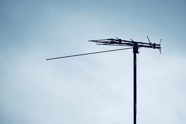Spotted bird on analog television towers