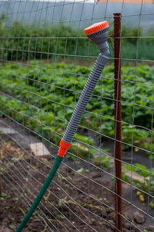 A spray bottle of water for irrigation on the fence