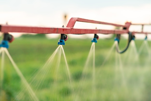 Spray heads of agricultural sprayers.
