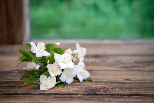 A sprig of jasmine with white flowers and green leaves on a wooden table, copy space