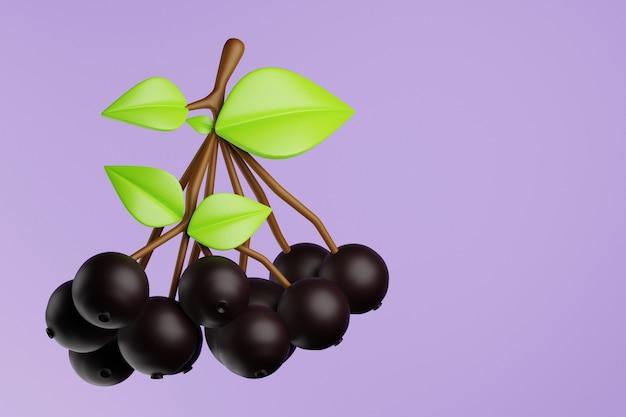 葉の3dレンダリングで黒いナナカマドの小枝