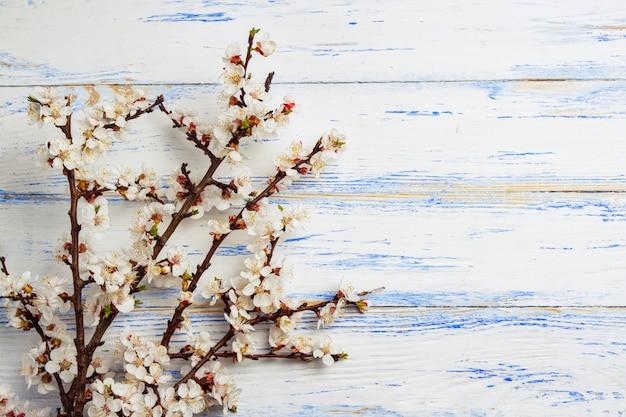 白い木製の表面に花とチェリーの小枝。
