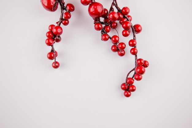 A sprig of red berries on spring white background decor decoration