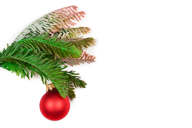 A sprig of spruce decorated with red ñhristmas ball isolated on white.