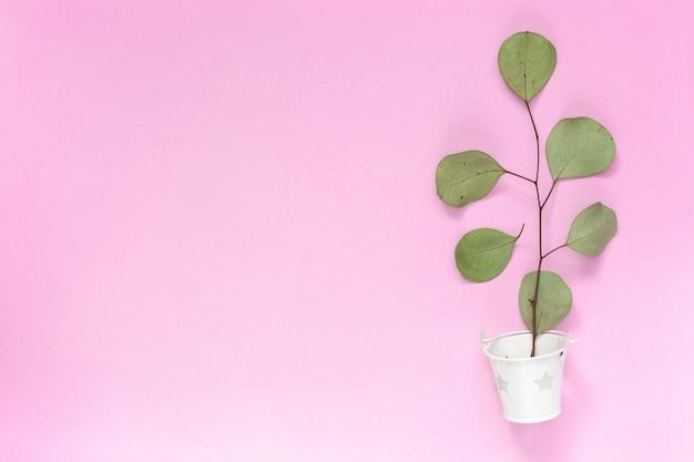 プレーンピンクの背景のコピースペースに白いバケツに葉を小枝します。