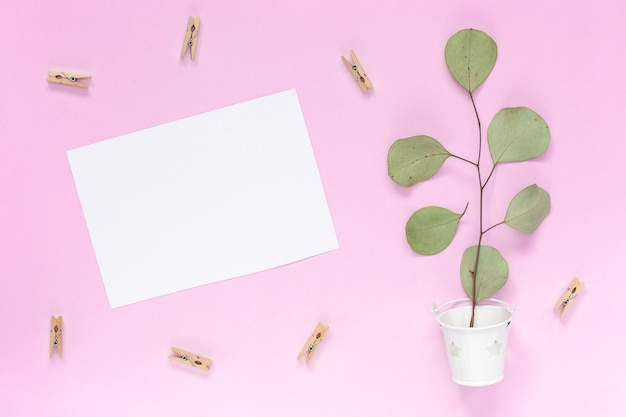 Sprig with leaves in a white bucket on a plain pink background copy space