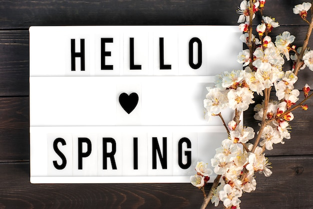 Sprigs of the apricot tree with flowers, lightbox with quote hello spring