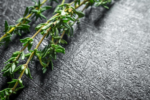 Sprigs of fresh thyme. on dark rustic background