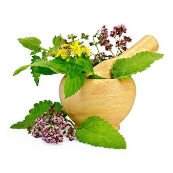 Sprigs of mint, lemon balm, oregano, tutsan, sage leaves in a wooden mortar and on the table isolated