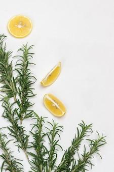 로즈마리와 레몬 웨지의 어린 가지. 플랫 레이