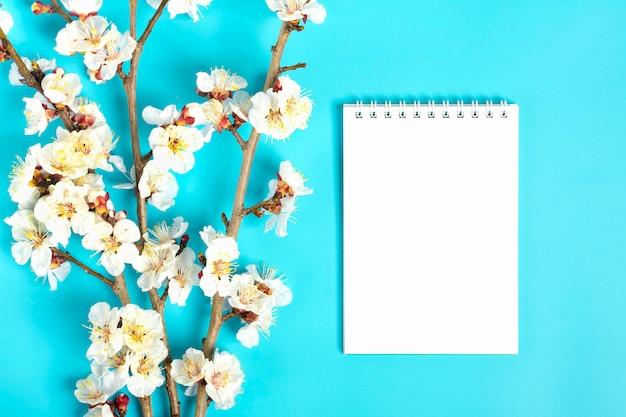青色の背景に花とアプリコットの木の小枝。テキストのための場所。