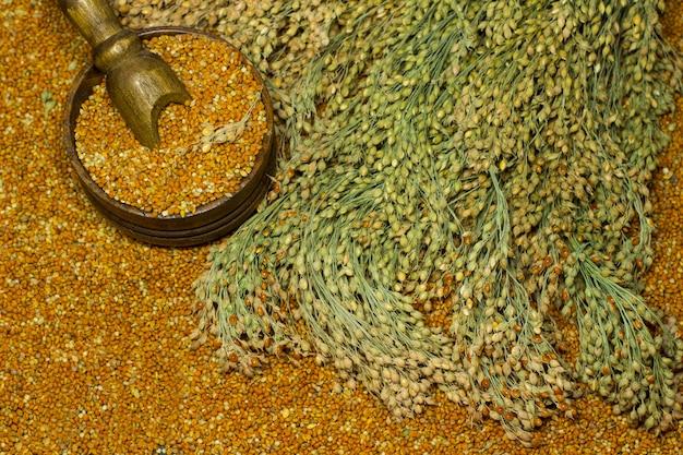 Sprigs of red millet