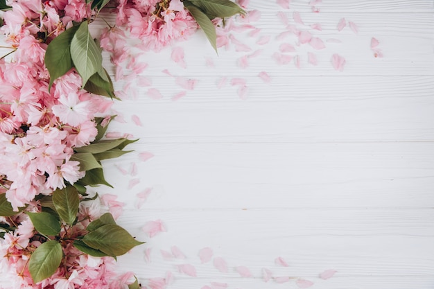 Sprigs of the sakura tree with flowers and petals on a wooden white background.