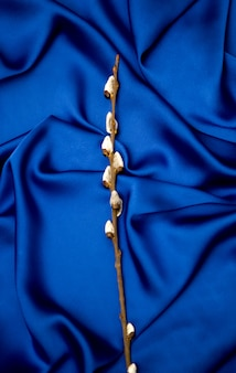 Sprigs of willow on a blue