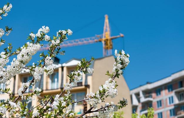 春と新築住宅建設のコンセプト。晴れた日に春の花の木と青い空と建設用クレーン