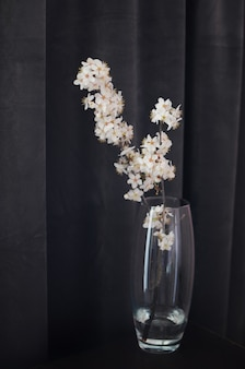 Spring apple blossom flowers in vase on dark background. home minimalism decor with copyspace