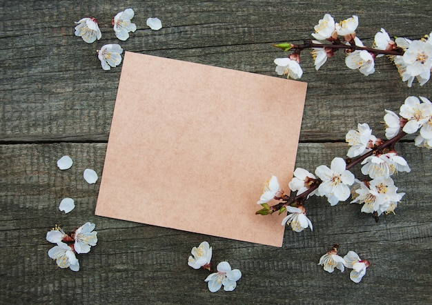 Spring apricot  blossom and card