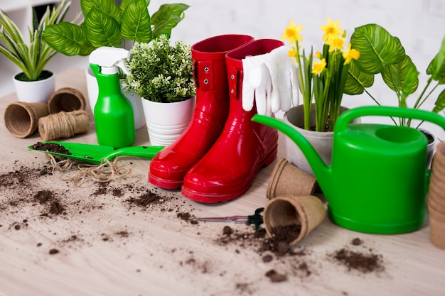 Spring background - close up of gardening tools and plants on wooden table background