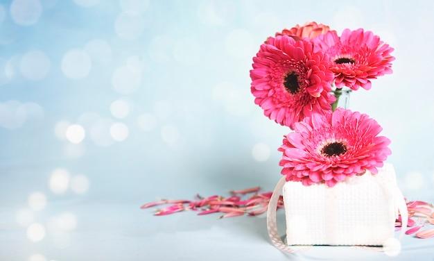 Spring background. daisy gerbera
