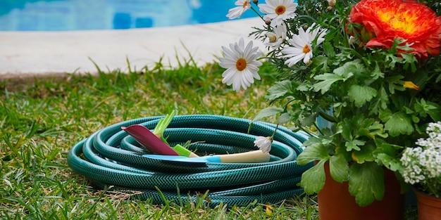 Spring background. gardening