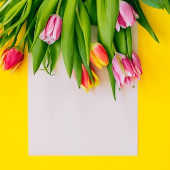 Spring background: pink tulips on beige card framed with yellow background. flat lay. copy space.