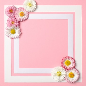 Spring background with border frame and daisy flowers in corners