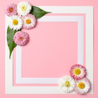 Spring background with border frame and daisy flowers in corners.