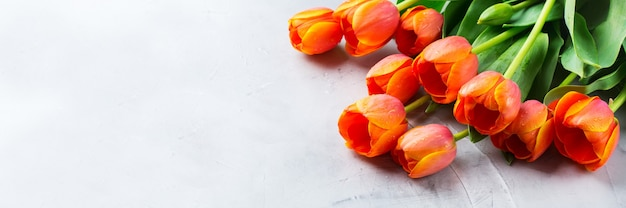 오렌지 화려한 튤립과 봄 배경입니다. 여자, 어머니의 날, 인사말 카드, 복사 공간 이미지